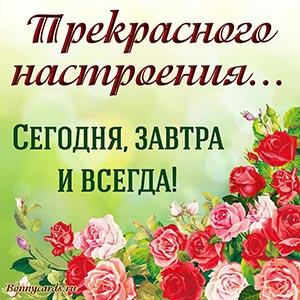 Прекрасного настроения сегодня, завтра и всегда