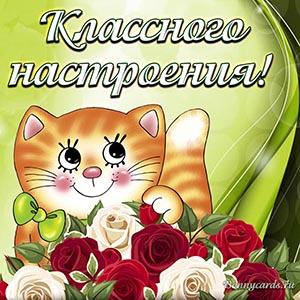 Милая открытка классного настроения с котиком