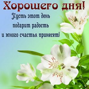 Картинка с пожеланием и цветами