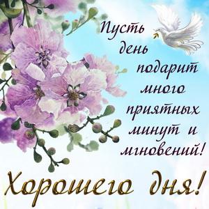 Открытка хорошего дня с голубем и цветами