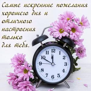Картинка с будильником на фоне цветочков