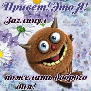 Привет, это я! Заглянул пожелать доброго дня!
