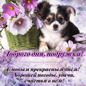 Картинка для подружки с собачкой и цветами
