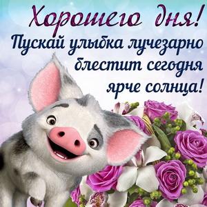 Открытка со свинкой и пожеланием хорошего дня