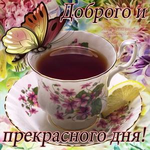 Чашечка чая с бабочкой для прекрасного дня