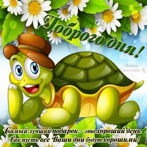 Забавная черепашка с милым пожеланием доброго дня