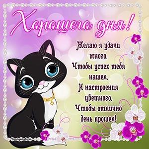 Открытка хорошего дня с котиком и пожеланием