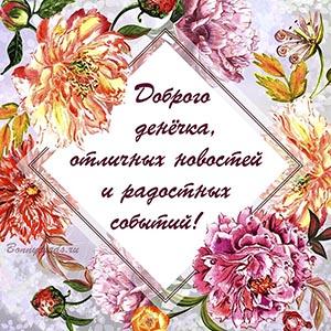 Доброго денёчка и отличных новостей на фоне цветов