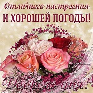 Картинка доброго дня и хорошей погоды с розами