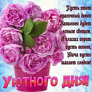 Доброе пожелание уютного дня на фоне розовых цветов