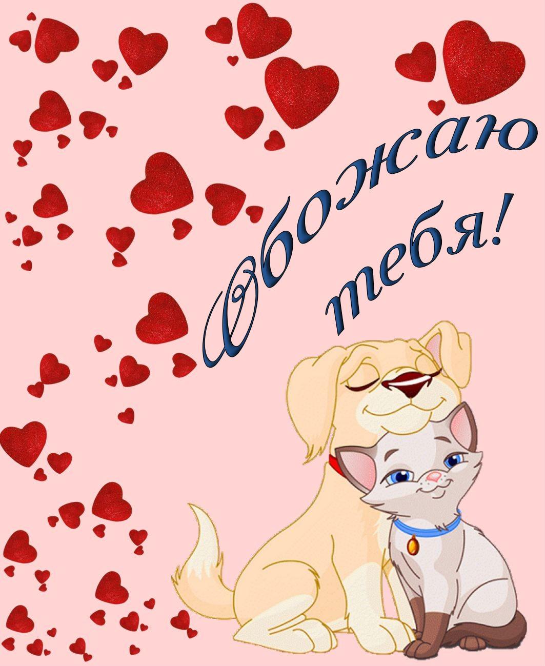Открытка - влюбленные кошечка и собачка