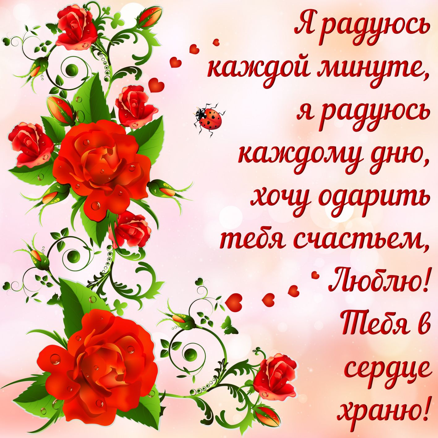 Признание в любви на фоне роз