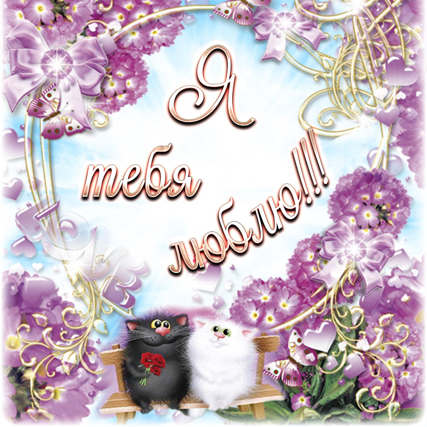 Открытка люблю - котики на скамеечке среди цветочков