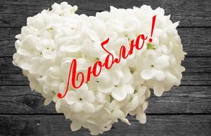 Сердечко из белых цветов с надписью