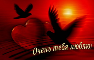 Два голубя на фоне заката