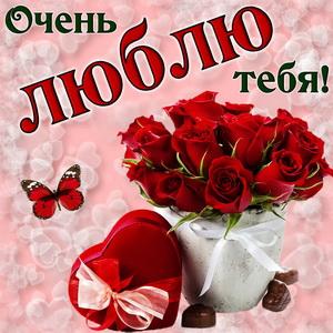 Картинка с букетом красивых роз
