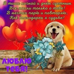 Милая собачка с красивыми цветами