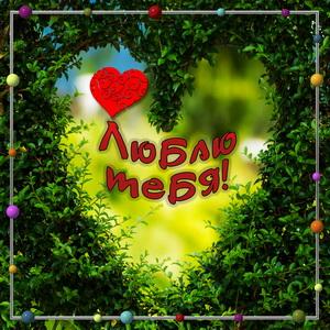 Сердечко среди зелёных листьев
