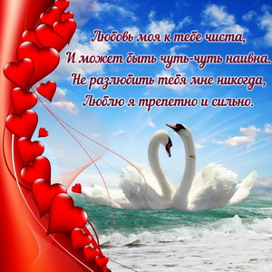 Лебеди на волнах с фоном из сердечек
