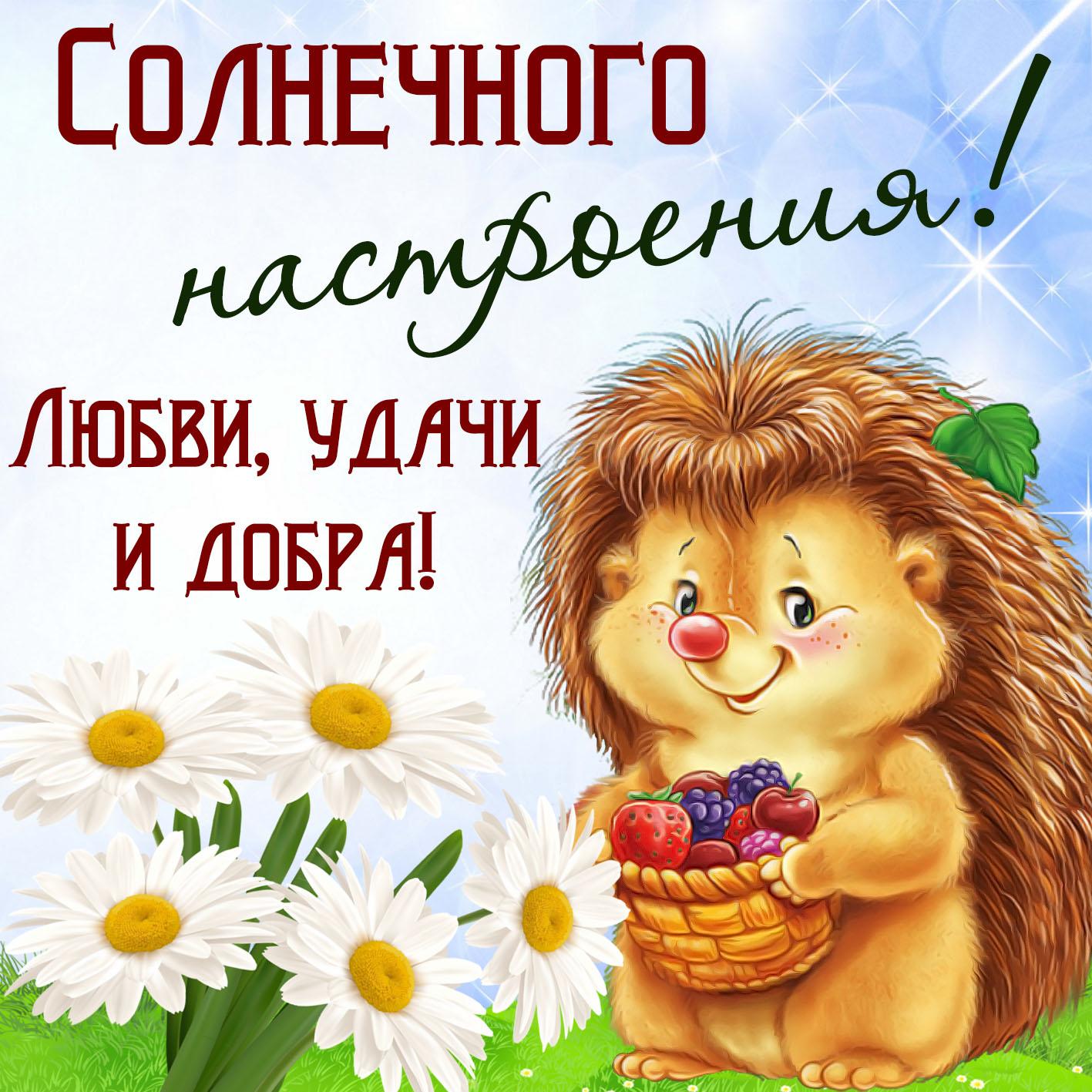 открытки с надписью позитив