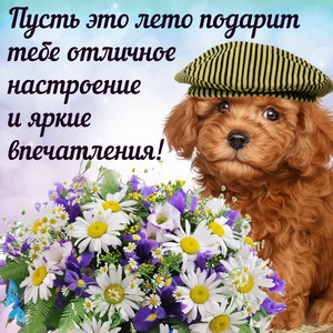 Милая собачка в кепочке с пожеланием на лето