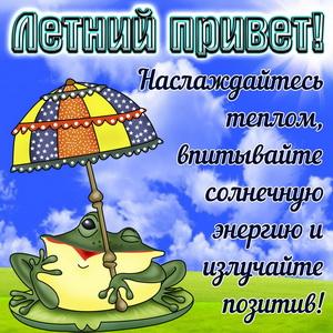 Лягушка с зонтиком посылает летний приветик