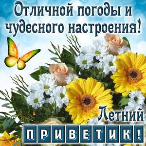 Летний приветик с бабочкой и цветочками