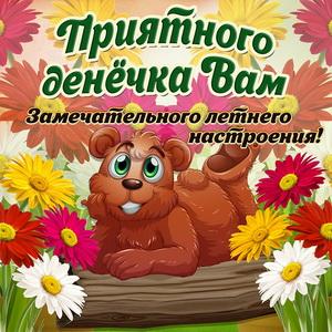 Медвежонок желает Вам приятного летнего денёчка