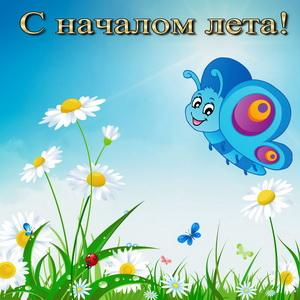 Рисованная бабочка поздравляет с началом лета