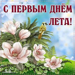 Открытка с первым днём лета с цветами и птичкой