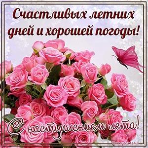 Поздравление с наступлением лета с бабочкой и розами