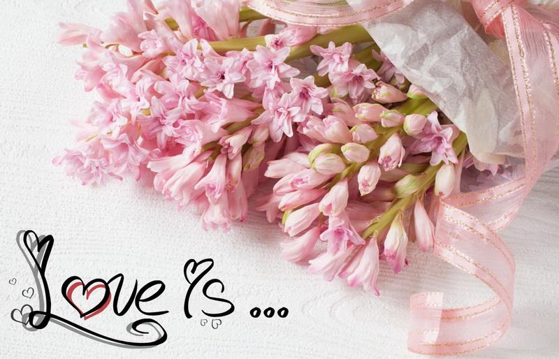 С днём святого валентина, букет розовых цветов