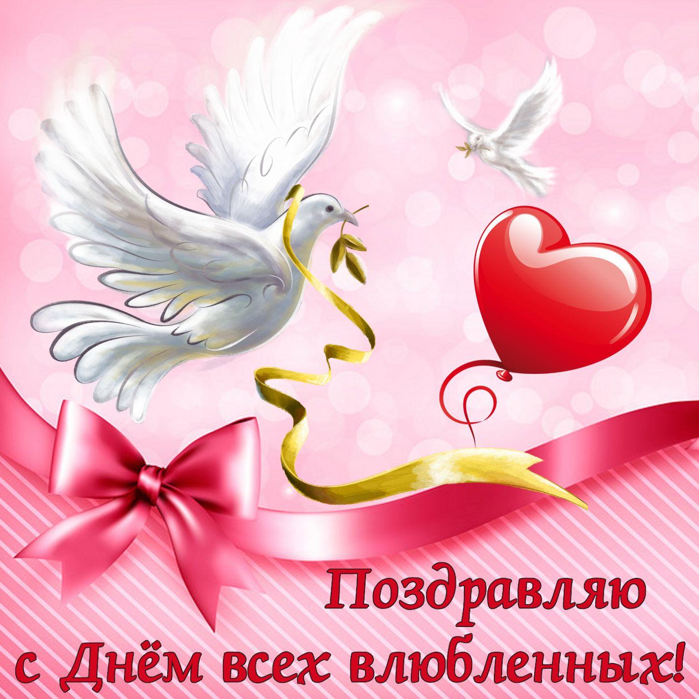 Голуби на День всех влюбленных