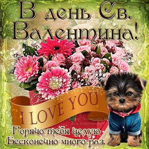Картинка на День Св. Валентина с собачкой и цветами