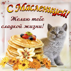 Милый котик поздравляет с Масленицей