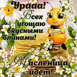 Милая пчелка поздравляет всех с наступающей Масленицей