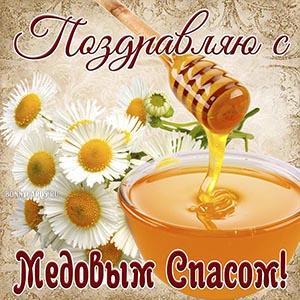Открытка с ромашками и мёдом на Медовый Спас