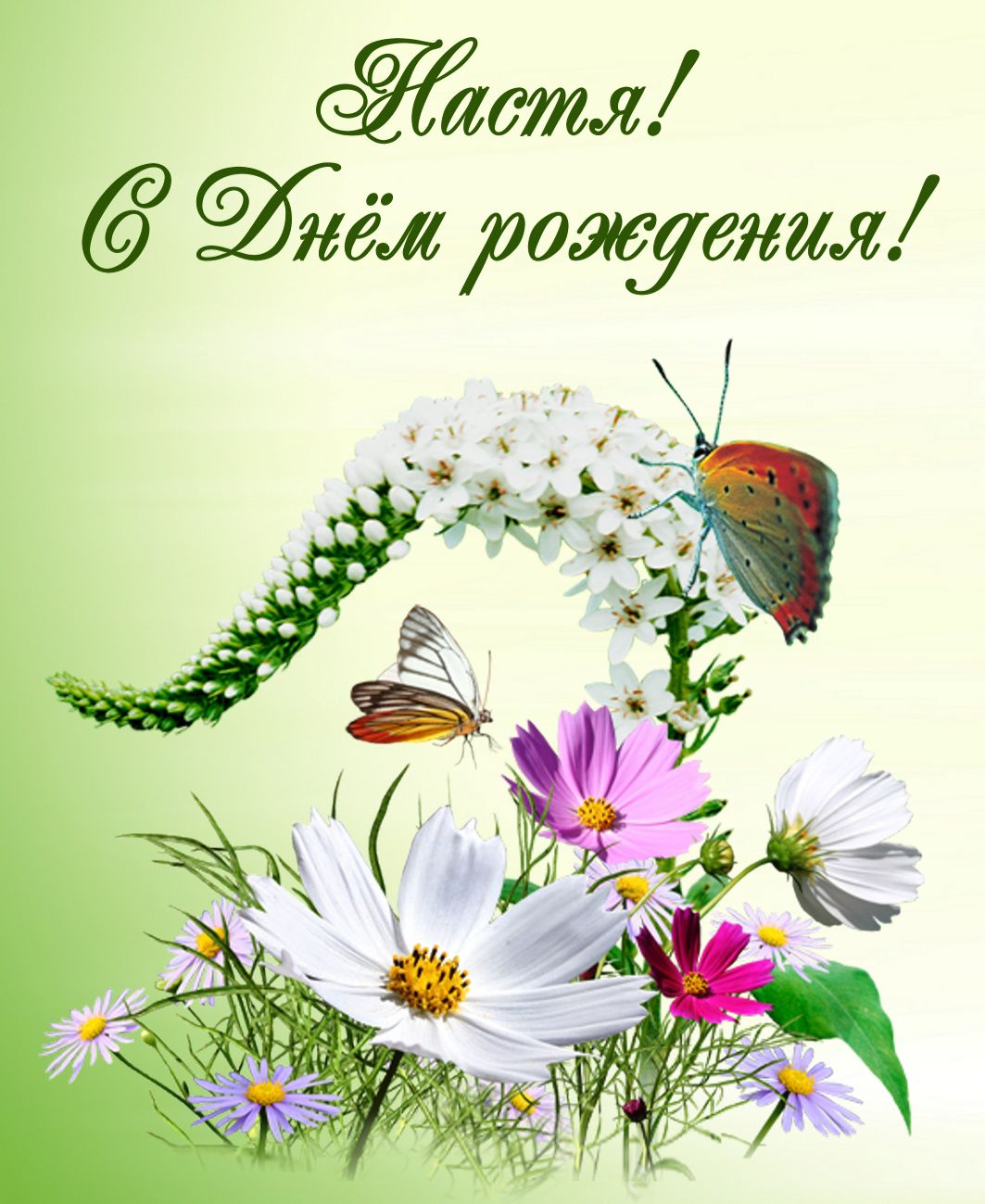 открытка - бабочки на полевых цветах на День Рождения Насте