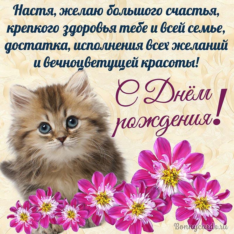 Открытка - красивое пожелание с котёнком на День рождения Насте