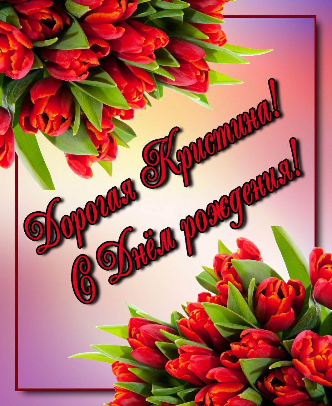 Красные тюльпаны для дорогой Кристины