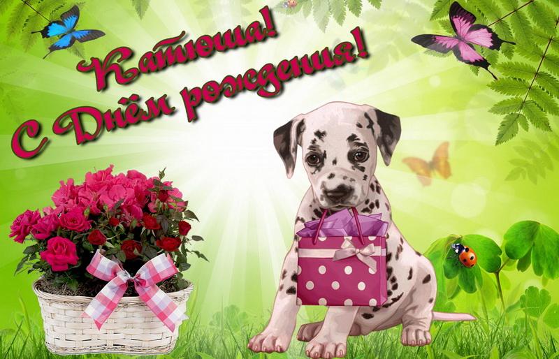 Собачка с подарком для Катюши