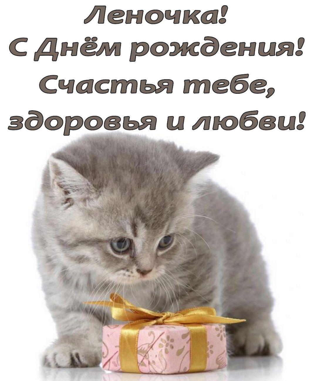 открытка - котик поздравляет Леночку с Днем Рождения