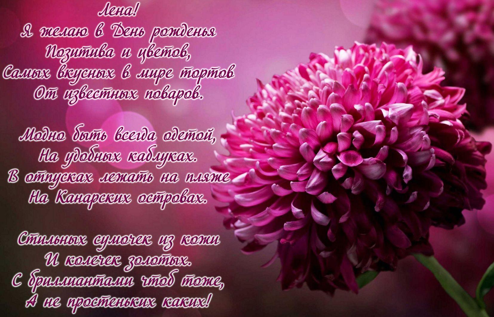 Картинки цветы в стихах, смешные прикольные