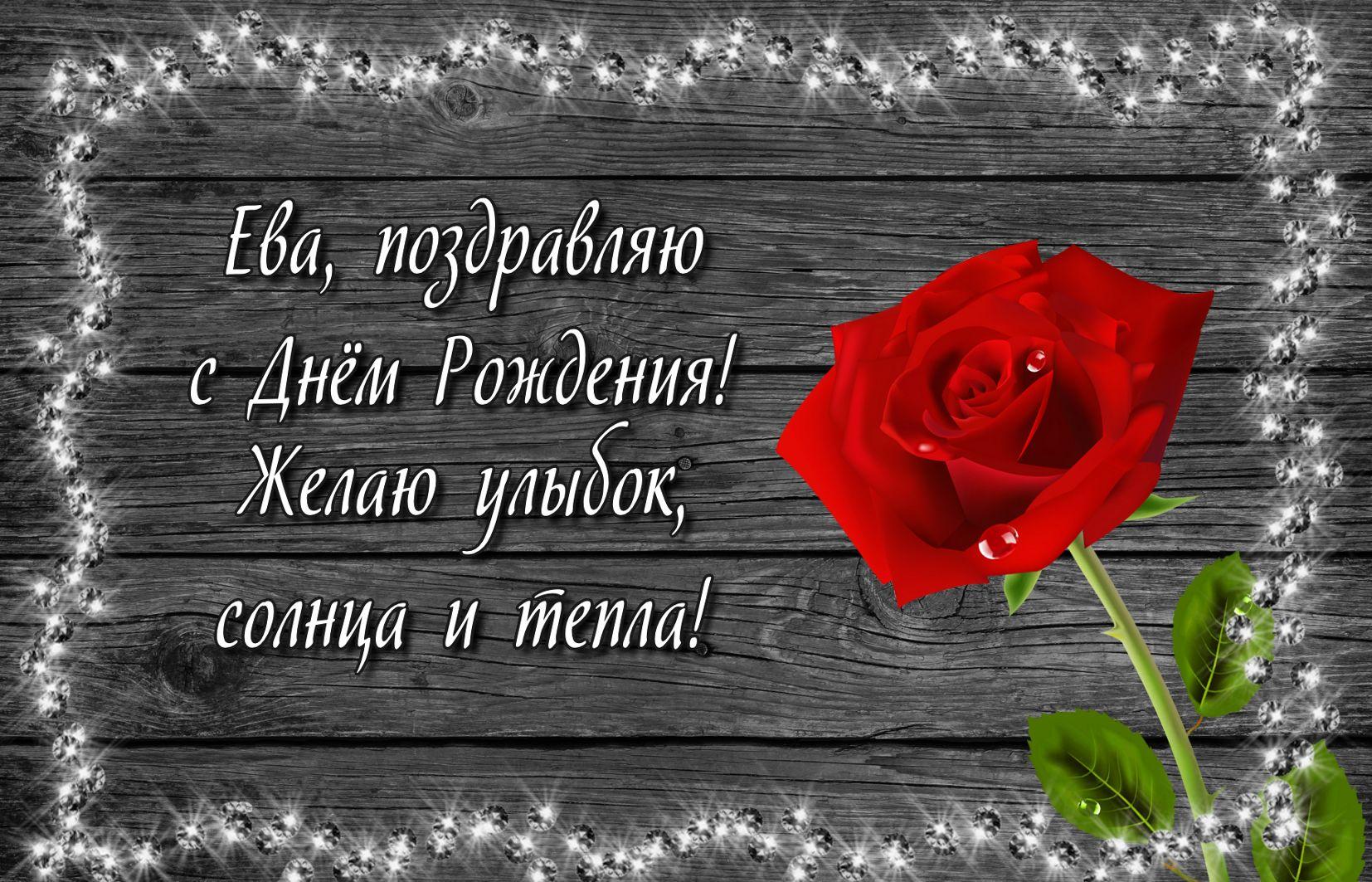 Красная роза Еве на День рождения
