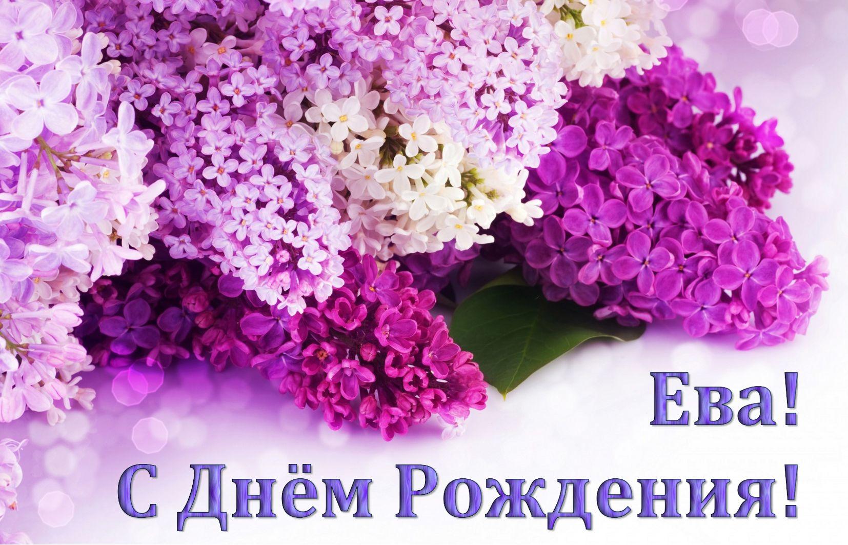 Цветы сирени на День рождения Еве