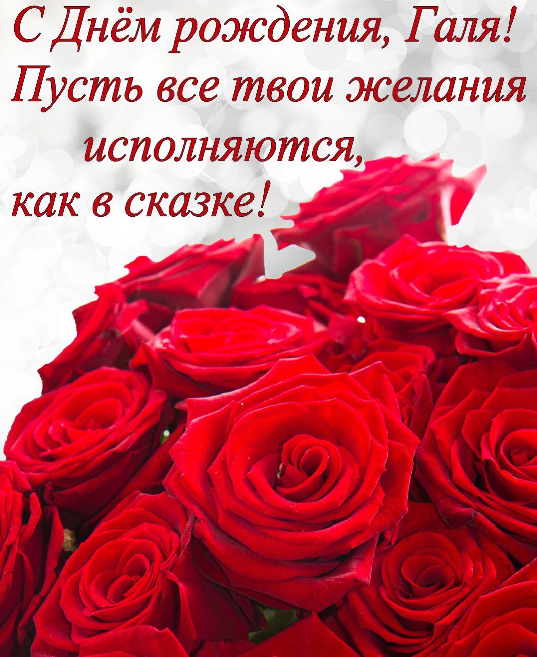 Красные розы на День рождения Гале