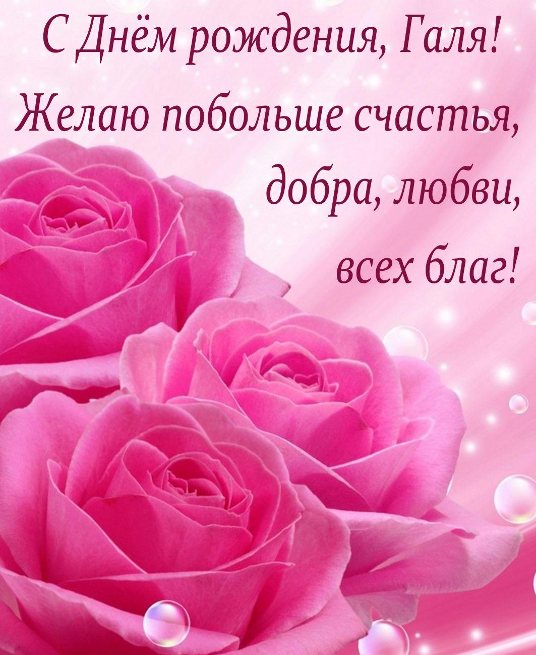 Розовые розы и пожелание на День рождения