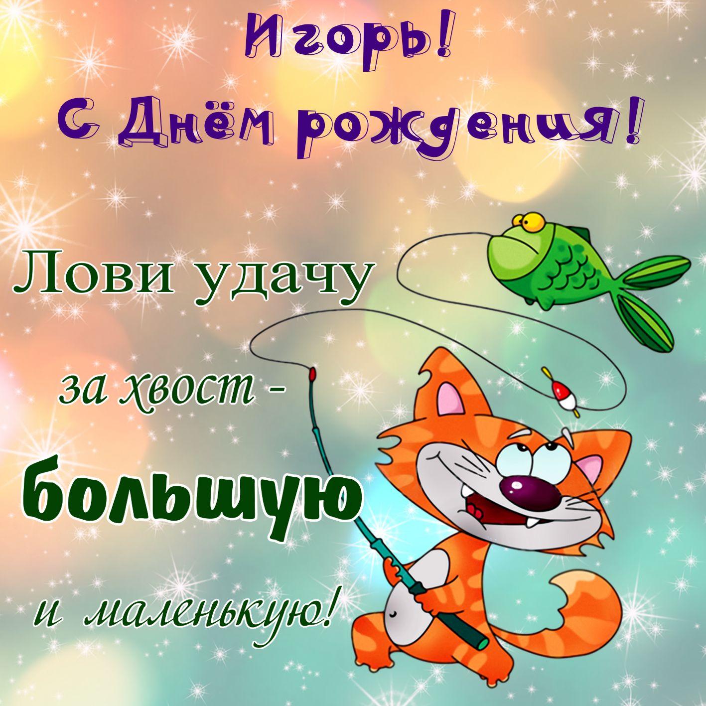 Поздравление Игорю с котом и рыбкой