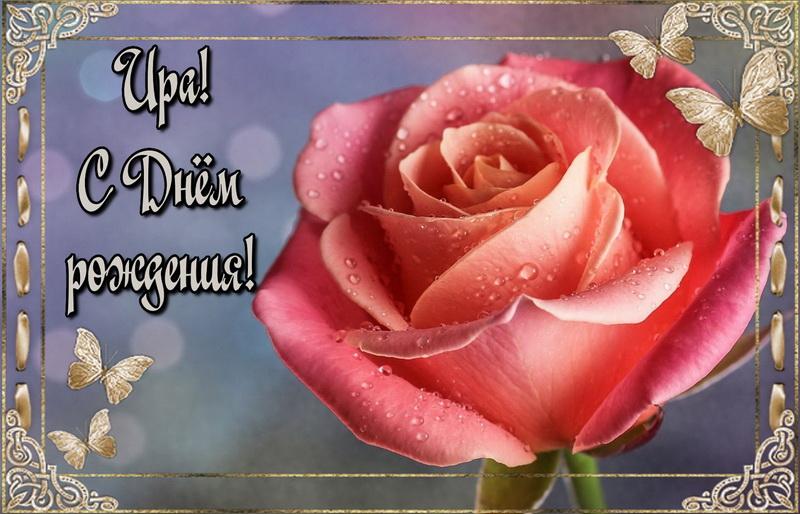 Роза в красивой рамке Ире на День Рождения