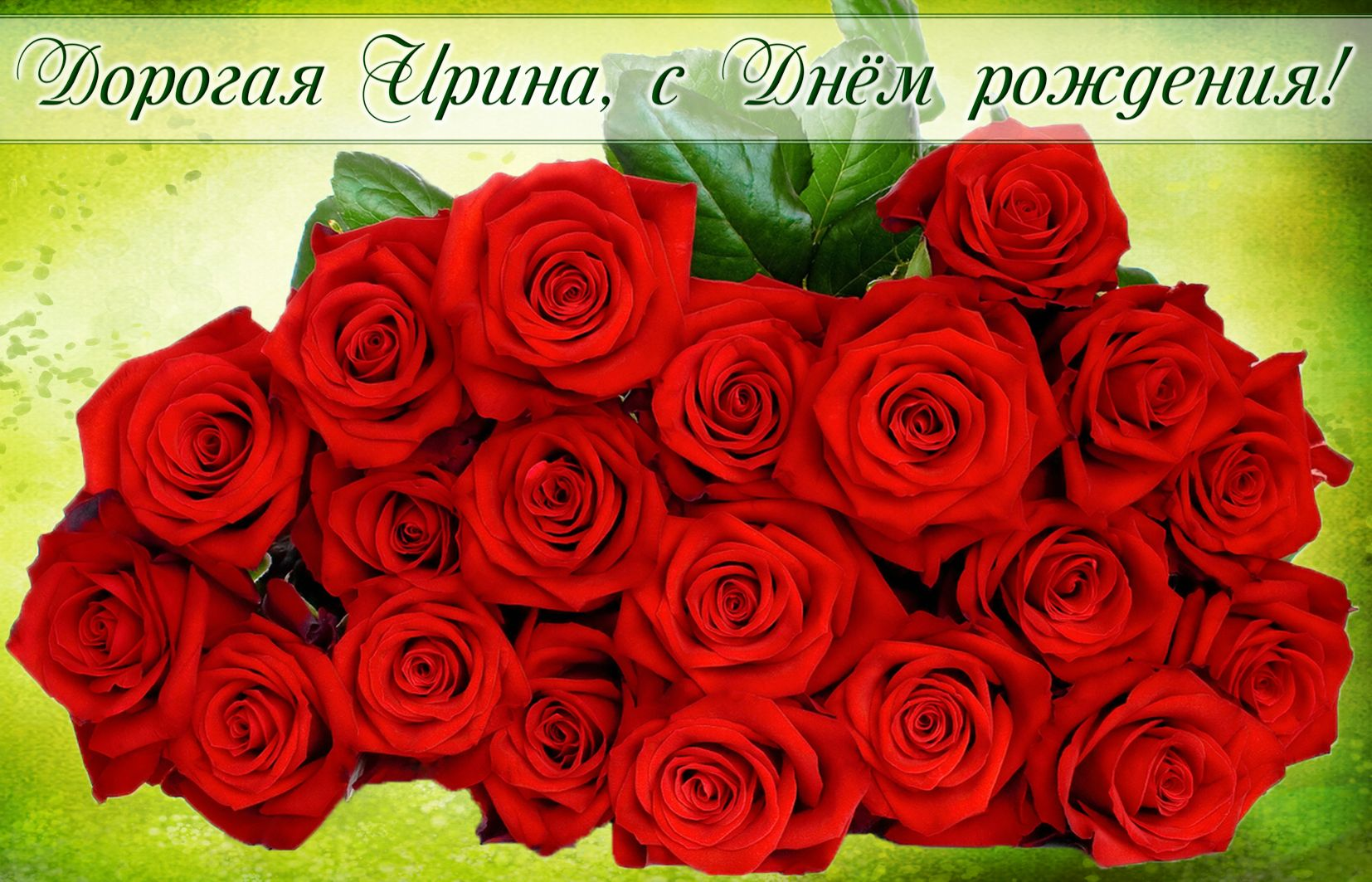 Красные розы на День рождения Ирине